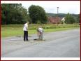 6. int. Harztreffen 2009 - Bild 76/199