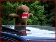 2. NissanHarzTreffen - Bild 5/506